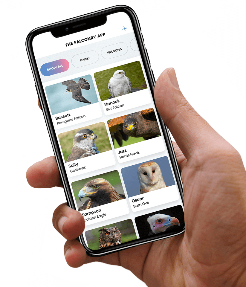 The Falconry App - The Ultimate App for Falconers